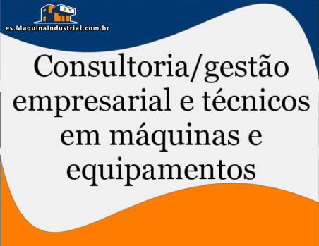 Consultoría y asistencia técnica en el campo de los hornos de las masas/galleta